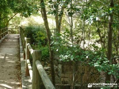 Hoces del Río Duratón - Sepúlveda;gps senderismo viajes de la comunidad de madrid senderismo con